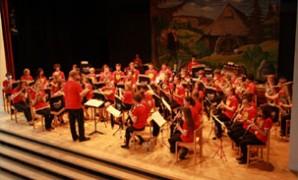 Somerset Young Musicians take on Taunton