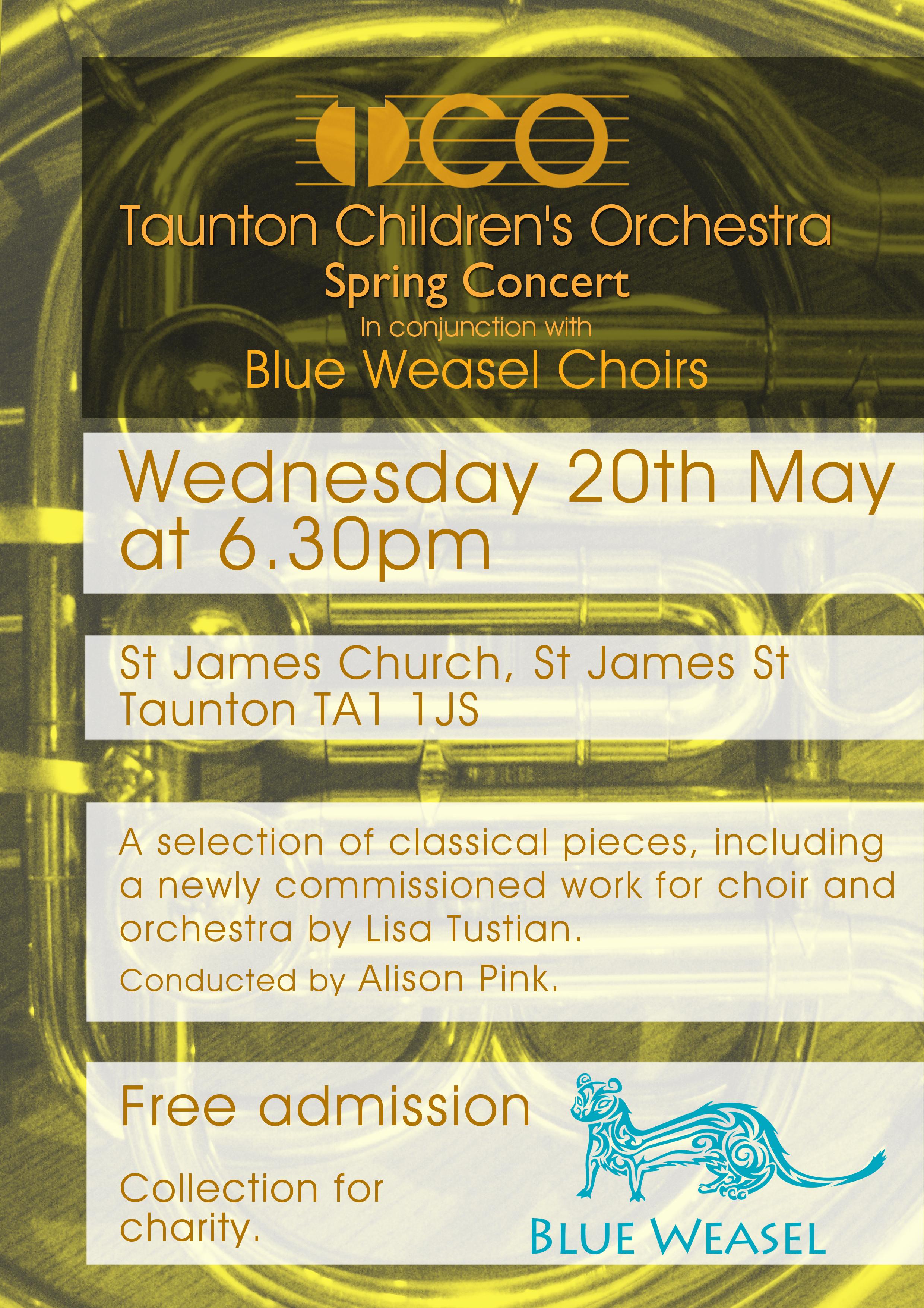 Taunton Children's Orchestra Spring Concert